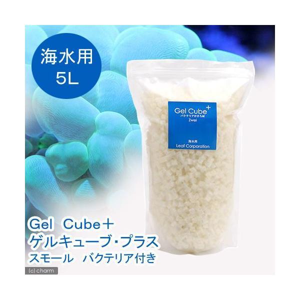 (海水魚)ろ材 海水用 Gel Cube+(ゲルキューブ・プラス) バクテリア付き スモール 5リットル 北海道・九州航空便要保温 沖縄別途送料|chanet