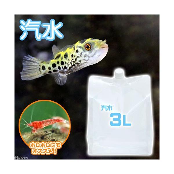 (海水魚)足し水くん 汽水 3L 航空便不可|chanet