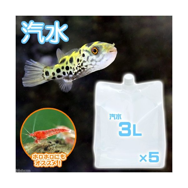 (海水魚)足し水くん 汽水 3L(5袋セット) 航空便不可|chanet