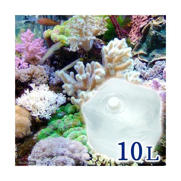 (海水魚)足し水くん テナーボトル 天然海水(海洋深層水) 10リットル 航空便不可・沖縄不可|chanet