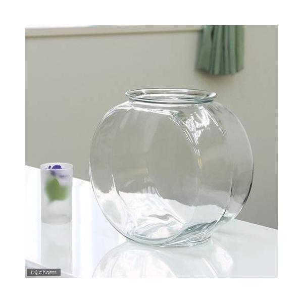 おしゃれなガラス製金魚鉢 太鼓鉢 大(7.6リットル)