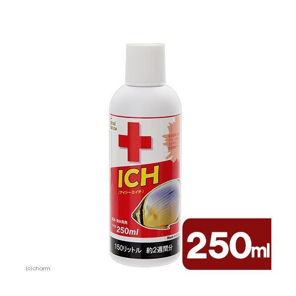 ICH(アイシーエイチ)250ml 淡水・海水用 白点虫 駆除 関東当日便|chanet