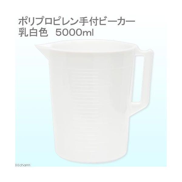 ポリプロピレン手付ビーカー・乳白色 5000mL 関東当日便|chanet