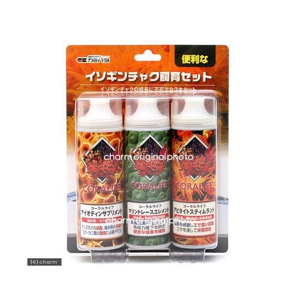 カミハタ コーラルライフ イソギンチャク飼育セット 3本入 関東当日便 chanet