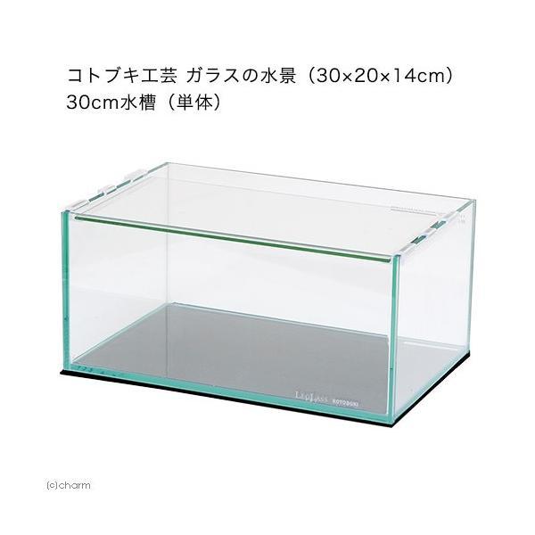 コトブキ工芸 kotobuki ガラスの水景(30×20×14cm) 30cm水槽(単体) お一人様2点限り 関東当日便 chanet
