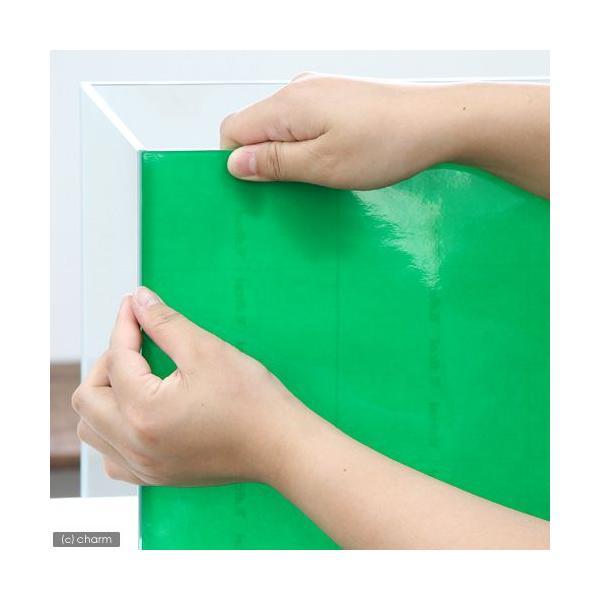 バックスクリーン ARTI(アルティ)45 ライトグリーン(クリアタイプ)(50×50cm)
