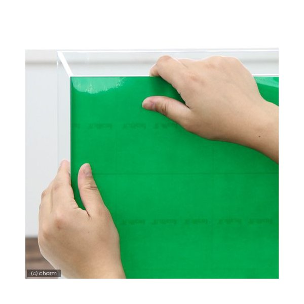 バックスクリーン ARTI(アルティ)60 ライトグリーン(クリアタイプ)(65×50cm)