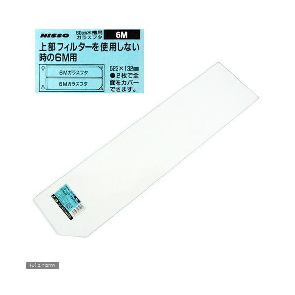 ニッソー 60cm水槽用ガラスフタ 上部フィルターを使用しない時の6M用 (幅523×奥行132×厚さ3mm) 関東当日便|chanet
