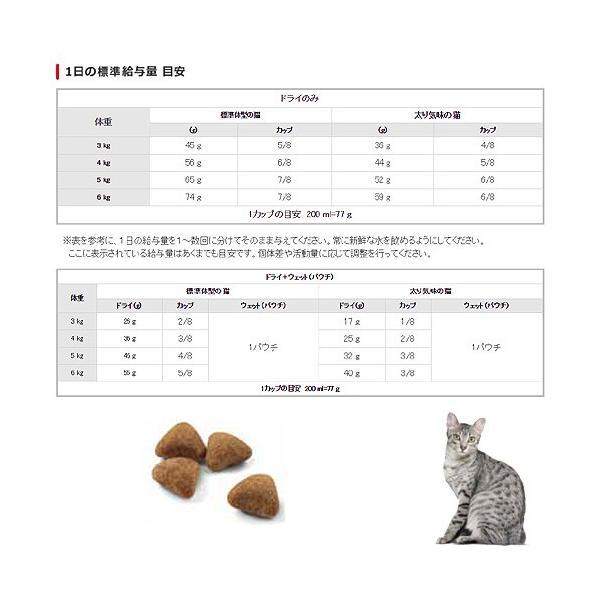 ロイヤルカナン 猫 インドア 成猫用 2kg 3182550704625 お一人様5点限り ジップ付 関東当日便|chanet|03
