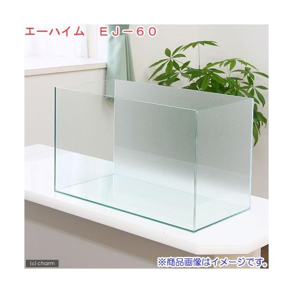 バックスクリーン貼付済 エーハイム EJ−60 60cm水槽 サンド(60×30×36cm)(単体) お一人様1点限り 沖縄別途送料