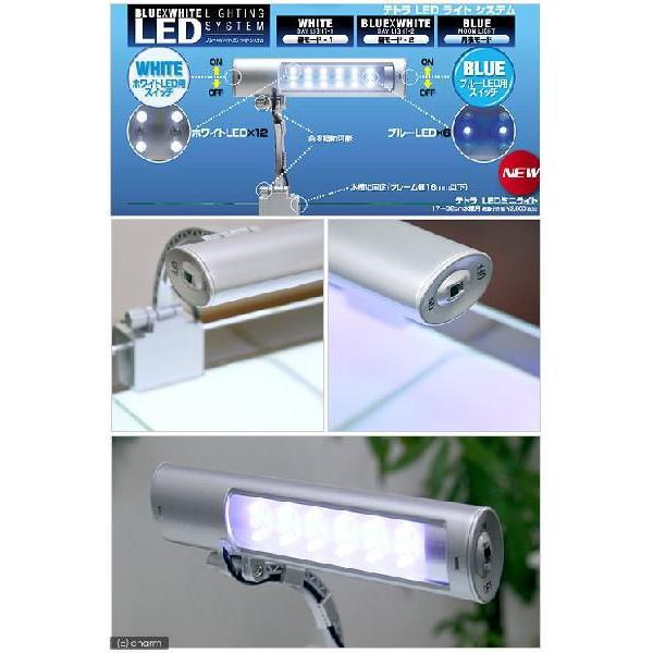 テトラ LEDミニライト LED−MINI 小型水槽用照明 熱帯魚 水草 アクアリウムライト 関東当日便|chanet|02