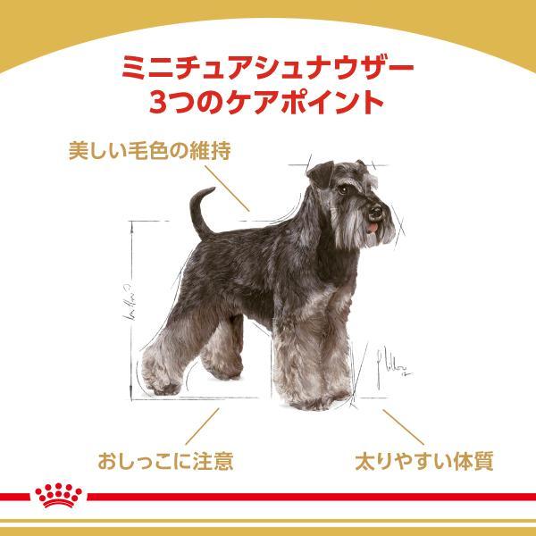 ロイヤルカナン ミニチュアシュナウザー 成犬・高齢犬用 3kg ジップ付 関東当日便|chanet|02