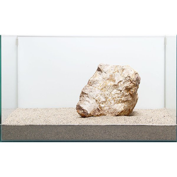 一点物 木化石 親石 60cm水槽用 896505