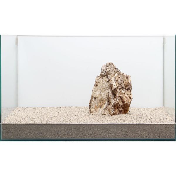 一点物 木化石 親石 60cm水槽用 896509