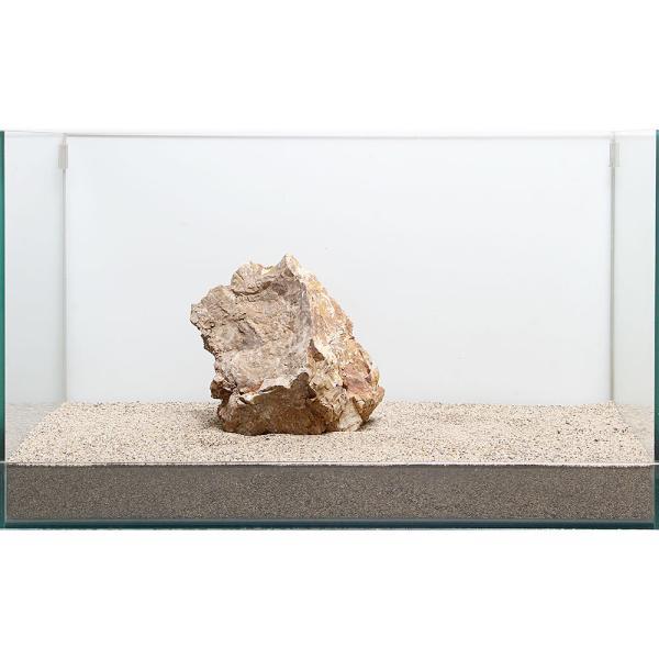 一点物 木化石 親石 60cm水槽用 896510