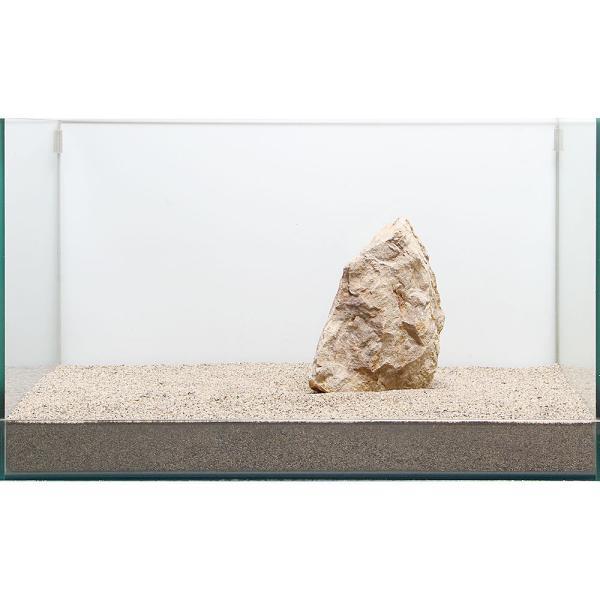 一点物 木化石 親石 60cm水槽用 896521