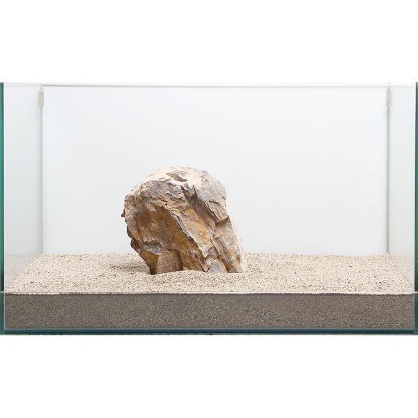 一点物 木化石 親石 60cm水槽用 896522
