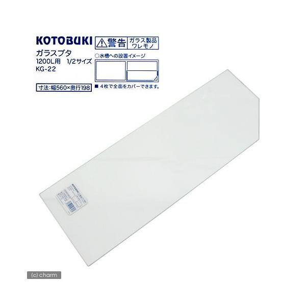 コトブキ工芸 kotobuki ガラスフタ(幅56.0cm、奥行き19.8cm、厚さ2mm) KG−22 (アクアリスト1200用)