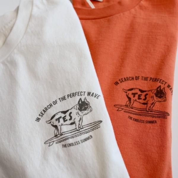テス ザエンドレスサマー Tシャツ TES THE ENDLESS SUMMER ブヒTシャツ ホワイト BUHI TEE WHITE 2019春夏新作|charger|05