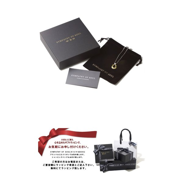 シンパシーオブソウル ネックレス ホースシュー ラージ  シルバー 真鍮 ダイヤ SYMPATHY OF SOUL 当店別注 Horseshoe Large SV BRASS Diamond × Chain 1.6mm|charger|06