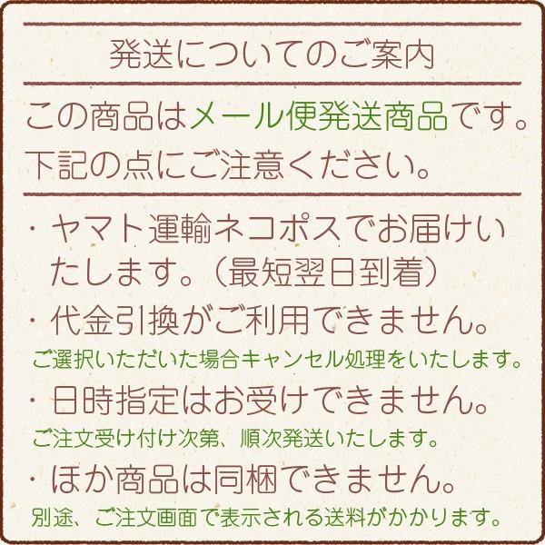 ごぼう茶/  国産ごぼう茶ティーバッグ 40包セット ネコポス便 送料無料  (ゴボウ茶、牛蒡茶 )|chashoan|02