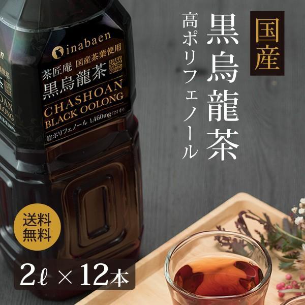 黒烏龍茶 静岡県産 ペットボトル 2リットル 2ケース 送料無料(2L×12本 高ポリフェノール ウーロン茶)|chashoan