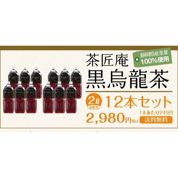 【予約9月下旬頃発送予定】黒烏龍茶 静岡県産 ペットボトル 2リットル 2ケース 送料無料(2L×12本 高ポリフェノール 国産 ウーロン茶 セール) chashoan 20