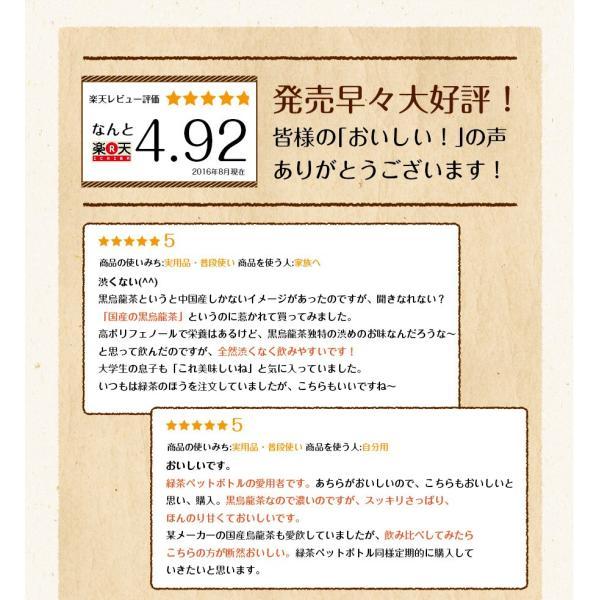 黒烏龍茶 静岡県産 ペットボトル 2リットル 2ケース 送料無料(2L×12本 高ポリフェノール ウーロン茶)|chashoan|15