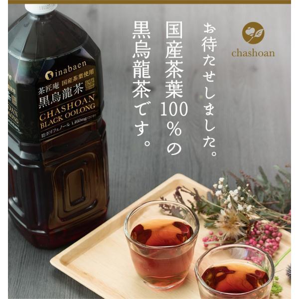 黒烏龍茶 静岡県産 ペットボトル 2リットル 2ケース 送料無料(2L×12本 高ポリフェノール ウーロン茶)|chashoan|03