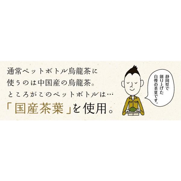黒烏龍茶 静岡県産 ペットボトル 2リットル 2ケース 送料無料(2L×12本 高ポリフェノール ウーロン茶)|chashoan|06