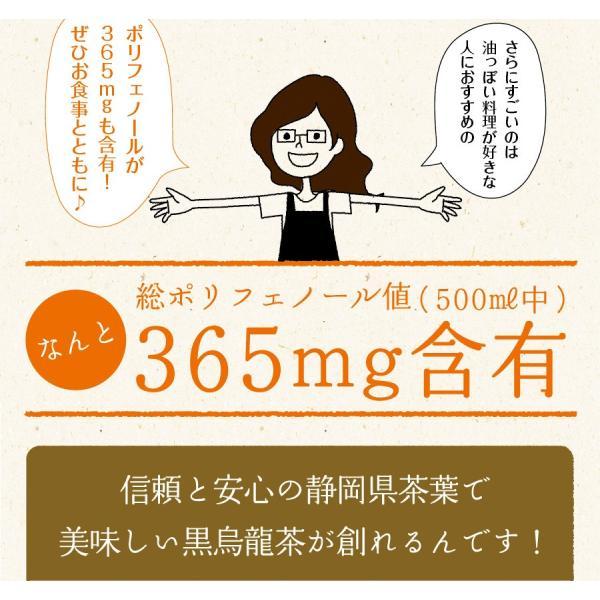 黒烏龍茶 静岡県産 ペットボトル 2リットル 2ケース 送料無料(2L×12本 高ポリフェノール ウーロン茶)|chashoan|08
