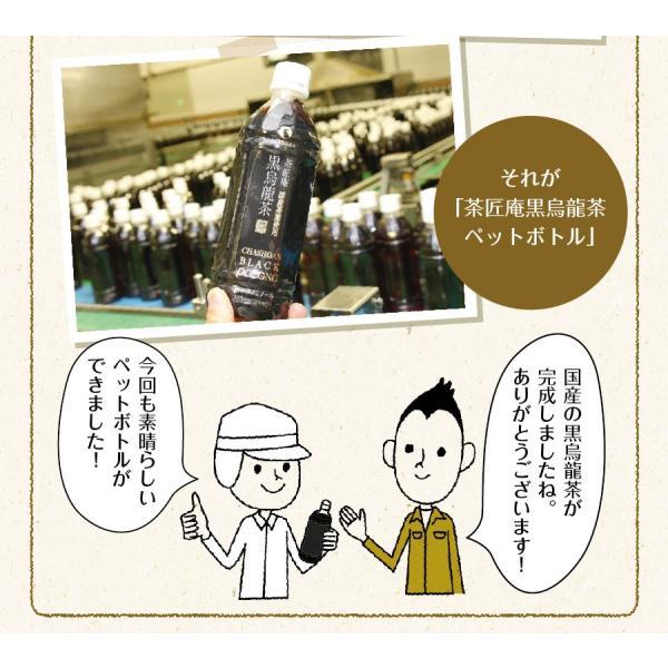 黒烏龍茶 静岡県産 ペットボトル 2リットル 2ケース 送料無料(2L×12本 高ポリフェノール ウーロン茶)|chashoan|10