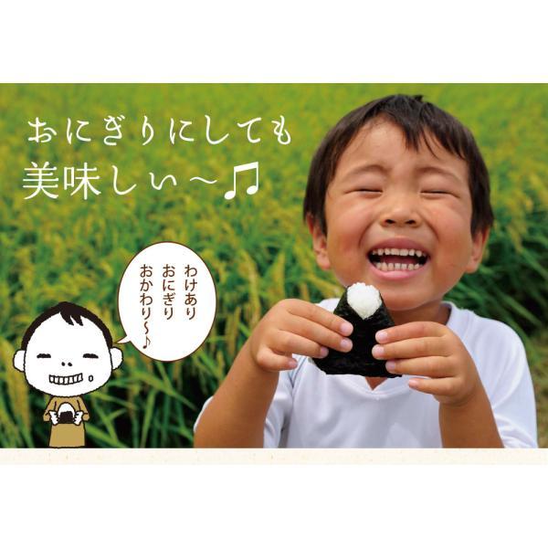 海苔/ 訳あり 有明産上級焼海苔 40枚  ネコポス便 送料無料 ( 焼きのり おにぎり 葉酸 タウリン )|chashoan|11