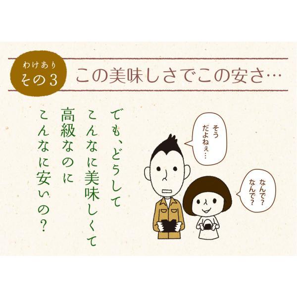 海苔/ 訳あり 有明産上級焼海苔 40枚  ネコポス便 送料無料 ( 焼きのり おにぎり 葉酸 タウリン )|chashoan|13