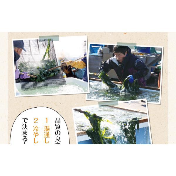 わかめ/ 肉厚 プレミアム 乾燥カットわかめ  ネコポス便 送料無料 (三陸外洋大谷産 若芽 チャック付き袋入り 乾燥 国産 )|chashoan|11