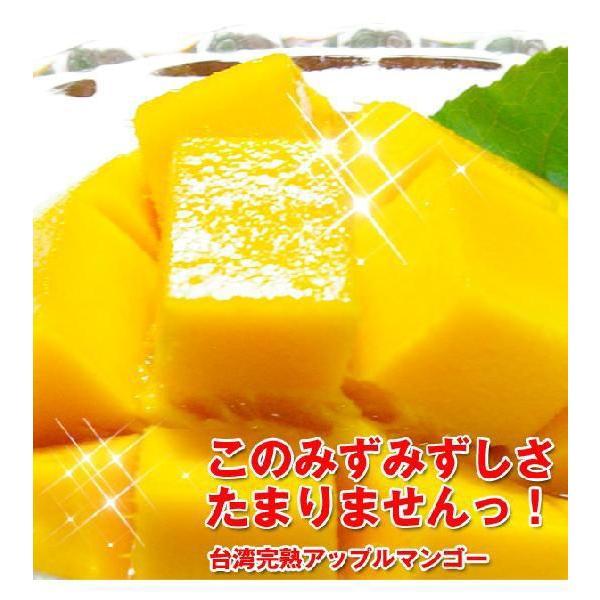 台湾産マンゴー特集