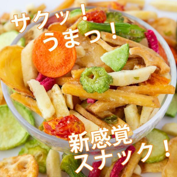 野菜チップス 65g 500円 野菜スナック お菓子 ギフト 人気 おやつ こども  母の日 ドライフルーツ ポイント消化 送料無料 非常食 cherry-nail 02