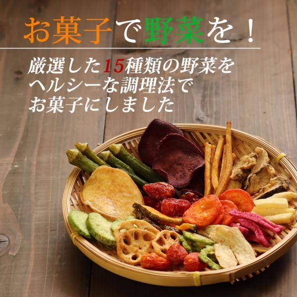 野菜チップス 65g 500円 野菜スナック お菓子 ギフト 人気 おやつ こども  母の日 ドライフルーツ ポイント消化 送料無料 非常食 cherry-nail 05