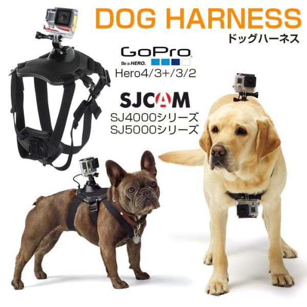 GoPro SJCAM 対応 ドッグハーネス 愛犬の胸や背中にカメラを装着 ペット目線の動画撮影に アクションカメラ HERO SJ4000 SJ5000 SJ5000X SJ6 CHI-CAM-HARNESS|chic