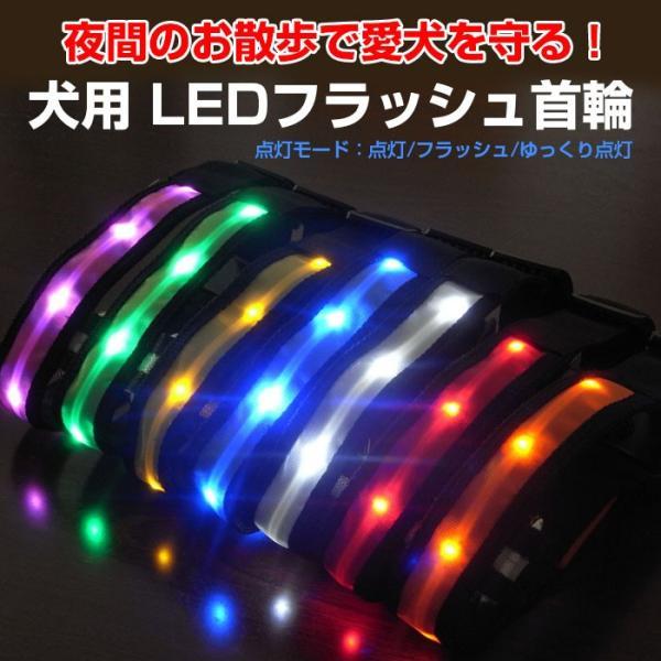 光る首輪 犬用 LED首輪 安全ライト LEDライト 軽量 首に負担が無い 7色 夜のお散歩 電池式 プレゼント ペット用品 CHI-AMP-930 送料無料 ポイント2倍♪|chic