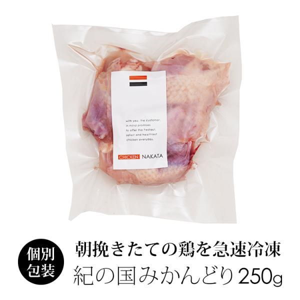 鶏肉 紀州うめどり 骨付き羽肉 カット 250g 国産 (冷凍) 【紀の国みかん鶏での代用出荷】