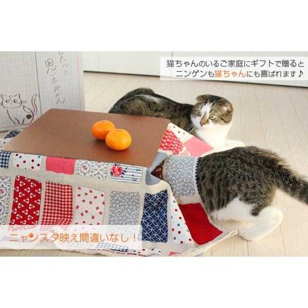 猫と、こたつと、思い出みかん 日本初猫専用こたつ付(段ボール製) 和歌山ミカン5kg入 保護猫 有田みかん 天田 土生【予約】|chicken-nakata|05