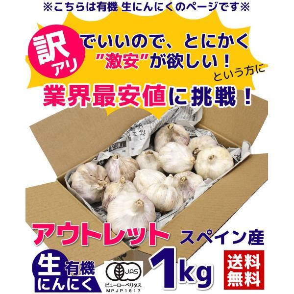 にんにく 訳あり 有機生ニンニク 1kg 送料無料 アウトレット スペイン産 ちこり村|chicory|02