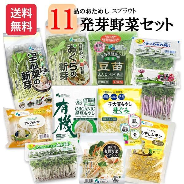 野菜セット 発芽野菜 おためし 11品セット ブロッコリースプラウト 豆苗 子大豆もやし お試し ギフト 送料無料|chicory