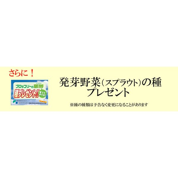 野菜セット 発芽野菜 おためし 11品セット ブロッコリースプラウト 豆苗 子大豆もやし お試し ギフト 送料無料|chicory|05