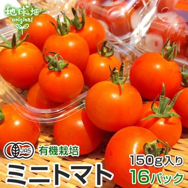 ミニトマト 有機栽培 150g×16p 鹿児島県産 有機JAS 農薬・化学肥料不使用 プチトマト みにとまと パック入り 冷蔵便 国産