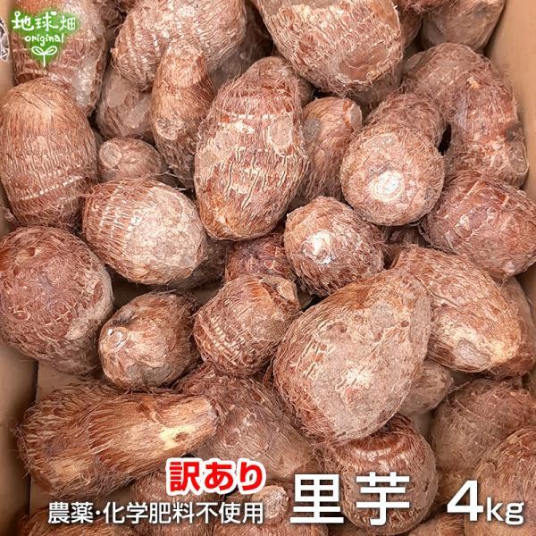 訳あり 里芋 4kg 送料無料 化学肥料・農薬不使用 鹿児島県産 さと芋 サトイモ 無農薬 無化学肥料 常温便 taro わけあり 大きさおまかせ