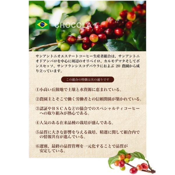 コーヒー 珈琲 プレミアムブレンド ブラジル・ケニア|chimoto-coffee|02