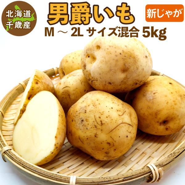 北海道産 男爵いも 新じゃが M〜2Lサイズ混合 5kg   男爵イモ 男爵芋 じゃがいも ジャガイモ 送料無料 訳あり