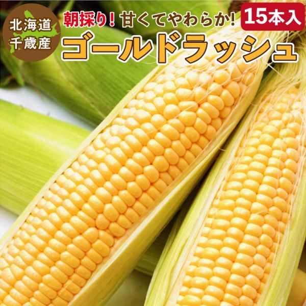 とうもろこし ゴールドラッシュ M〜2L混合 15本入り 北海道 千歳産 黄色いトウモロコシ 送料無料 ご予約販売 2021年8月中旬〜順次発送
